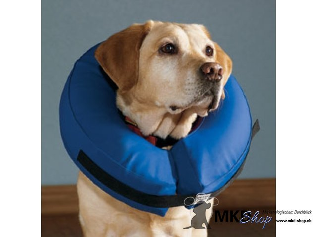 Inflatable Cone Collar For Dogs